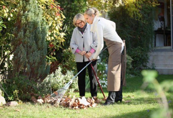 Entretien du jardin à domicile dans le 78 par CBL Réagir